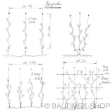 Abstandshalter Rankhilfe für 3MM Seil ( kleine Ausführung ) -  Edelstahl Wandhalter für Fassadenbegrünung